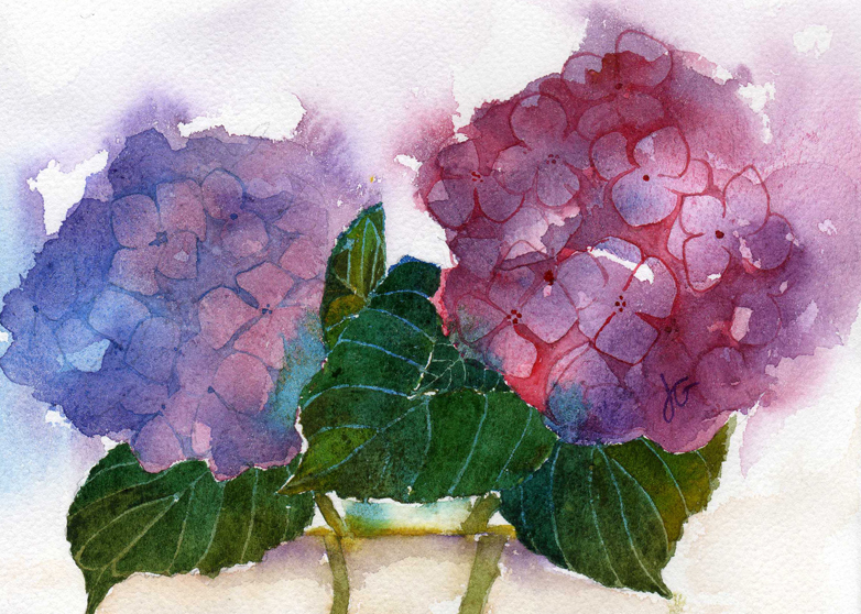 hydrangea Flower Watercolor Painting